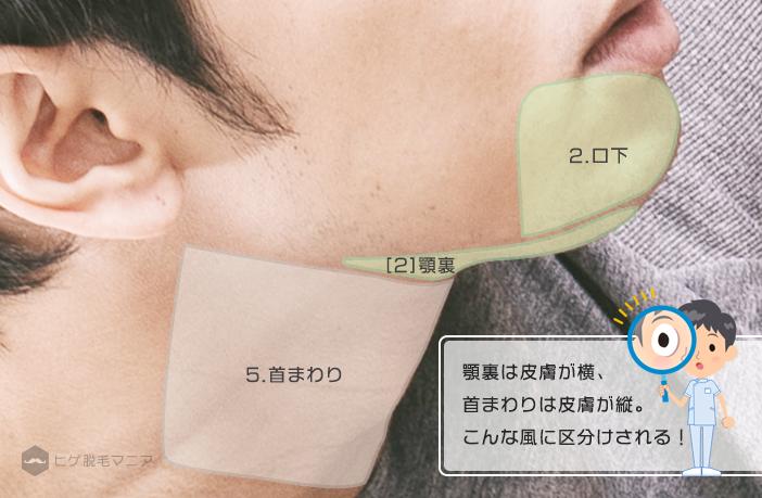 ヒゲ脱毛部位詳細:あご裏と首の境界