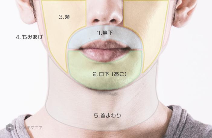 ヒゲ脱毛の部位の分け方